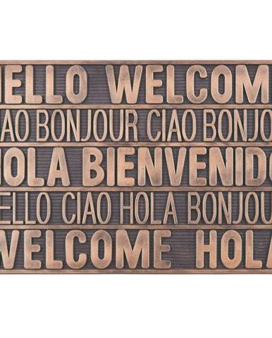 Rohožka International Welcome, 40/60cm