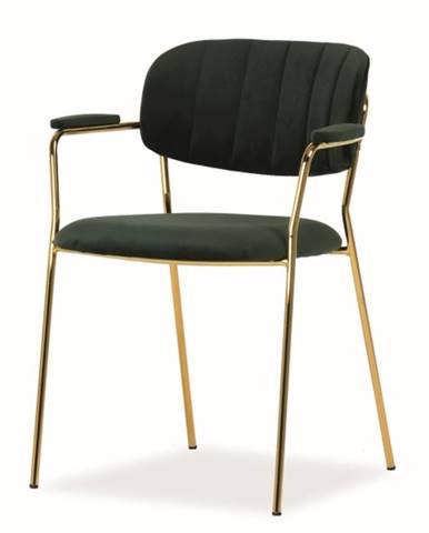 Signal Jedálenská stolička Carlo II Velvet