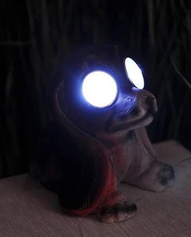 Solárna lampa T1680330-2 8.5X9X11 Pies