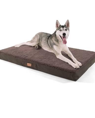 Brunolie Balu, pelech pre psa, vankúš pre psa, možnosť prania, ortopedický, protišmykový, priedušná pamäťová pena, veľkosť XL (120 × 10 × 72 cm)