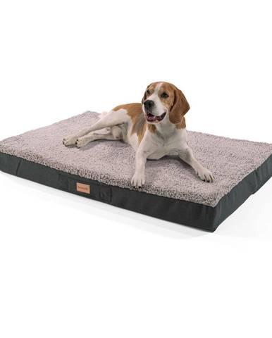 Brunolie Balu, pelech pre psa, vankúš pre psa, možnosť prania, ortopedický, protišmykový, priedušná pamäťová pena, veľkosť L (100 × 10 × 65 cm)