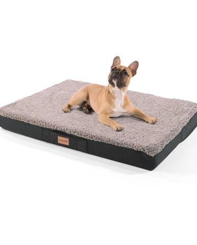 Brunolie Balu, pelech pre psa, vankúš pre psa, možnosť prania, ortopedický, protišmykový, priedušná pamäťová pena, veľkosť M (79 × 8 × 60 cm)