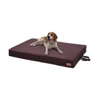 Brunolie Paco, pelech pre psa, vankúš pre psa, možnosť prania, ortopedický, protišmykový, priedušný, skladacia pamäťová pena, veľkosť L (100 × 10 × 70 cm)