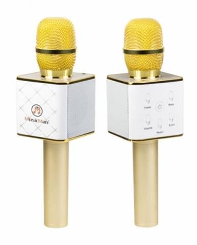 Karaoke mikrofón Technaxx BT-X31