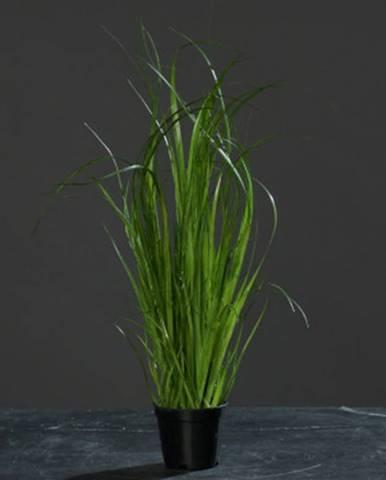 Umelá rastlina Tráva 35 cm, zelená%