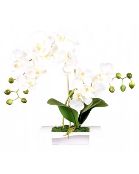 Bissell Umelá orchidea v miske 14 kvetov, 45 cm, biela