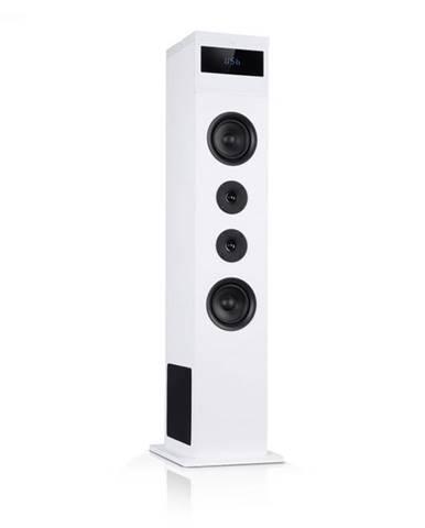 Auna Karaboom 100, vežový reproduktor, 120 W max., bluetooth, FM, 2 v 1 USB, biely