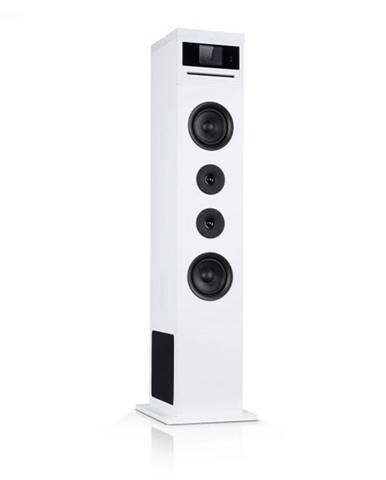 Auna Karaboom 100 Wifi, vežový reproduktor, internetové rádio, DAB+, BT, 120 W, biely