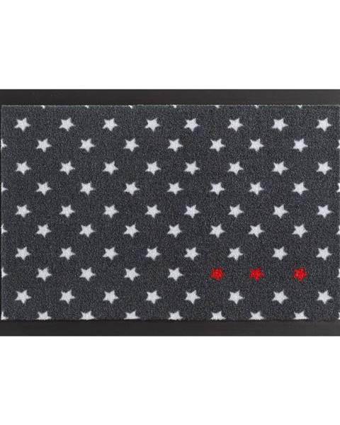 Hanse Home Rohožka Hanse Home Star Printy, 40×60 cm