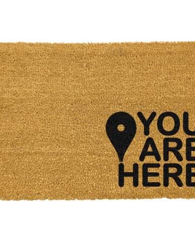 Čierna rohožka z prírodného kokosového vlákna Artsy Doormats You Are, 40 x 60 cm