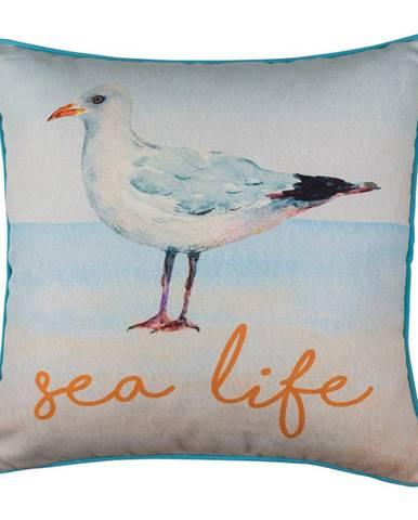 Obliečka na vankúš Mike&Co.NEWYORK Seagull Sea Life, 43 × 43 cm